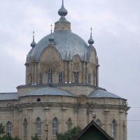 Троицкий собор в Гусю Железном, фрагмент, Гусь Железный