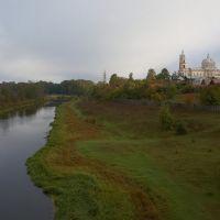 ~Церковь Троицы Живоначальной~, Гусь Железный