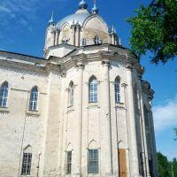 Собор в Гусе-железном, Гусь Железный