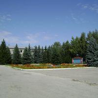 Администрация, Ермишь