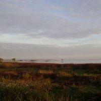 утро на пруду, Ермишь