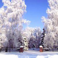 Парк зимой, Ермишь