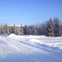 Зима в Ермиши, Ермишь