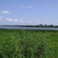 пруд июнь, Ермишь