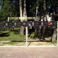 фото погибших бойцов, Ермишь