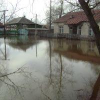 семенная станция, Ермишь