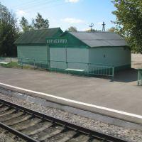 станция Кораблино (вид из поезда), Кораблино