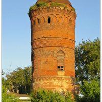 Старая башня - old tower - 2008, Милославское