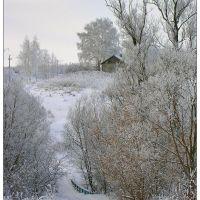 Зима в Милославском - 2010 - Winter in Miloslavskoe, Милославское