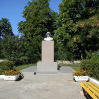 мичурин, Пронск