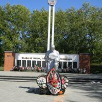 памятник, Пронск