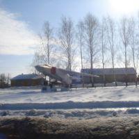 Самолет в селе Путятино, Путятино