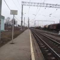 Станция Рыбное, Вид в сторону ст. Дивово, Рыбное