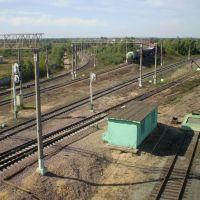 Поезд на Узуново, Рыбное