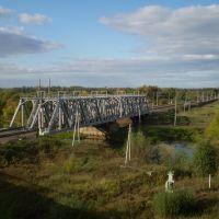 Мост р.Вожа, Рыбное