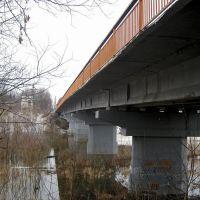 Мост, Рыбное