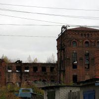 Руины консервного завода, Ряжск