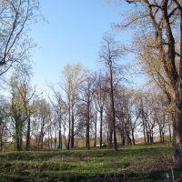 Pervomaysky park of Sapozhok, Сапожок