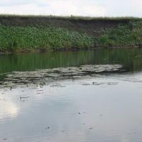 река Верда, Сараи