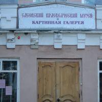 Вход в Сасовский краеведческий музей и картинную галерею, Сасово