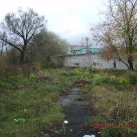 Территория больницы ЖД, Сасово