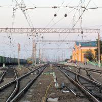 Станция Сасово, Сасово