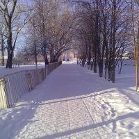 Аллея школы №2, зима 2012, Сасово