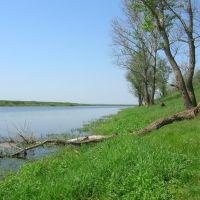 Ozero, Спасск-Рязанский
