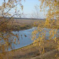 ЛЕВАЯ ВЕТЬ, Спасск-Рязанский