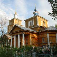 Спасск Рязанский. Единственная уцелевшая в городе церковь., Спасск-Рязанский