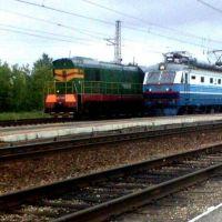 Поезда на ж/д станции Чучково. Июнь 2006., Чучково