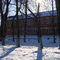Старая школа, Чучково