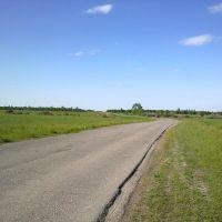 Дорога на Пертово., Чучково