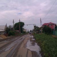 разбитая дорога и сорняки по ул. Рабочая, Безенчук
