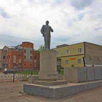 Ленин в Богатом, Богатое