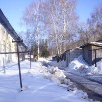 Улица Управленческая Поселок Богатырь, Богатырь