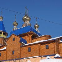 Золотые купола в Борском, Борское
