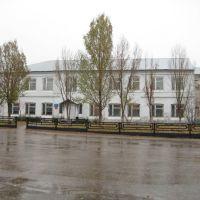 Библиотека, Борское
