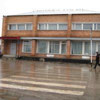 Музыкальная школа, Борское