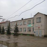 Администрация больницы, Борское