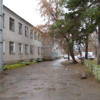 Двор больницы, Борское