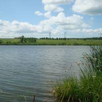 Самарская обл. дубовый умет озеро, Волжский