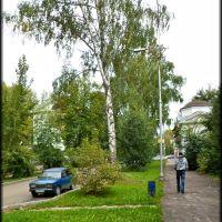 Приволжская улица, Жигулевск