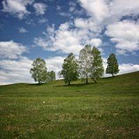 Пейзаж, Камышла