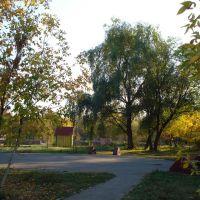 Парк в гор. Кинеле, Кинель