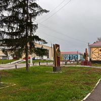 На улицах села Кошки, Кошки