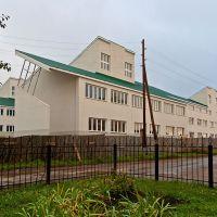Школа в селе Кошки, Кошки