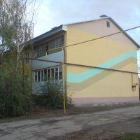Дом на переулке Космонавтов, Красноармейское