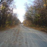 Дорога к училищу, Красноармейское