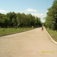 """парк """"Дубки"""", Новокуйбышевск"""